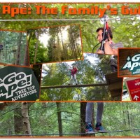 Go Ape: The Family Guide - What you need to know for Tree Top Fun