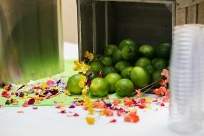 fruit at open house getsims