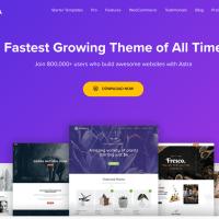 Top 5 Best WordPress Theme Free 2020