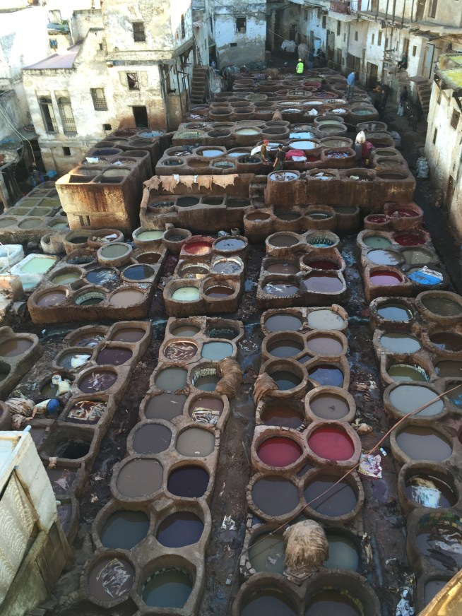 The fascinating tannery in Fez