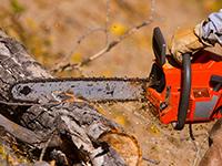 chainsaw-safety
