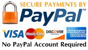 web design payments