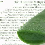 aloe vera leaf with list of symptoms it helps soothe