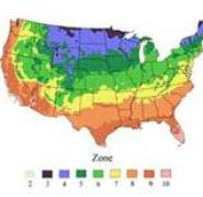Map of USA temperature zones for planting
