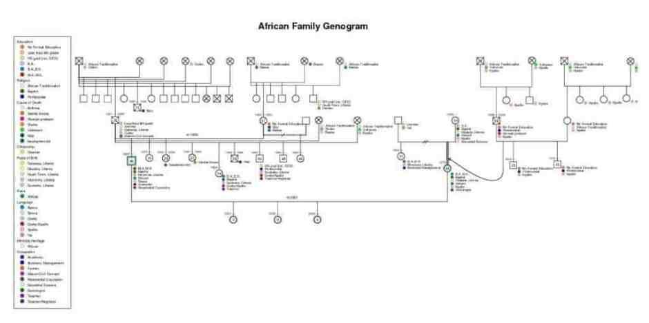 8 free genogram templates word excel pdf formats