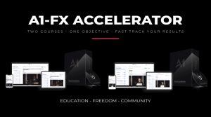 Read more about the article The A1 Accelerator x The FX Accelerator