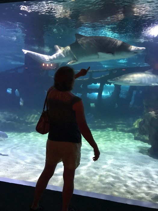 Cleveland Aquarium review