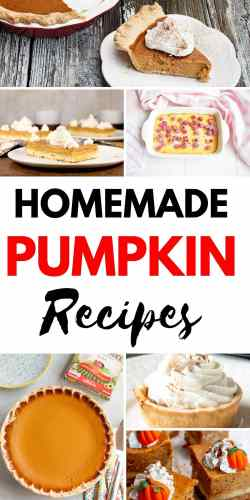 Get your Thanksgiving on with these homemade pumpkin pie recipes! #pumpkin #pumpkinpie #pumpkinspice #foodie