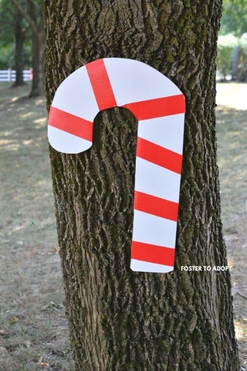 giant candy cane on tree hidden for the cane hunt.