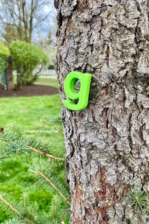 I placed a letter on trees, and they had to come together as a team and try to figure out the word.