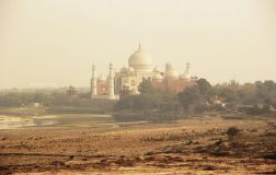 Agra31