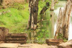 AngkorWatTapinaklari02