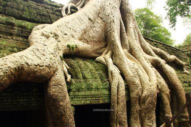 AngkorWatTapinaklari71