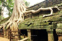 AngkorWatTapinaklari76