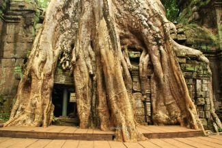 AngkorWatTapinaklari83
