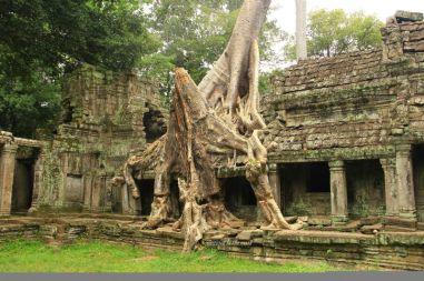 AngkorWatTapinaklari99