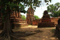Ayutthaya25