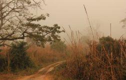 ChitwanJeepSafari05