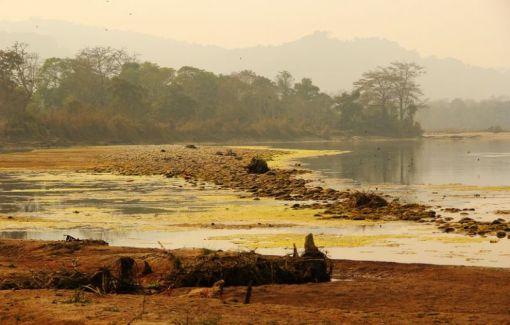 ChitwanJeepSafari26