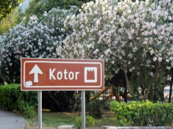 Kotor25