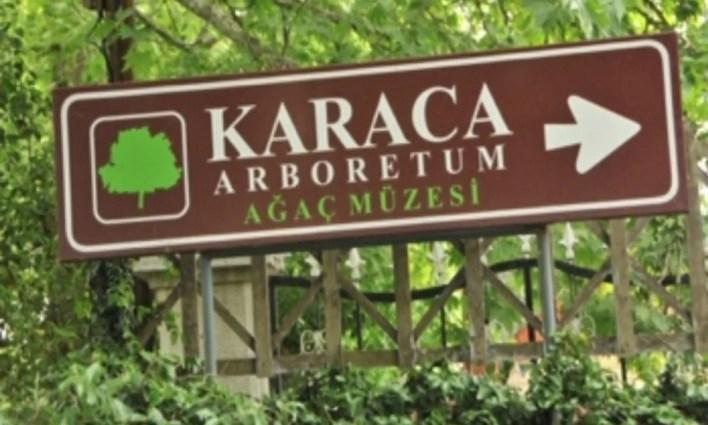 Karaca Arboretumu