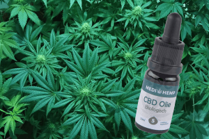 cbd olie review