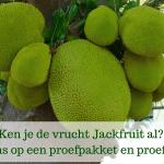 Jackfruit review