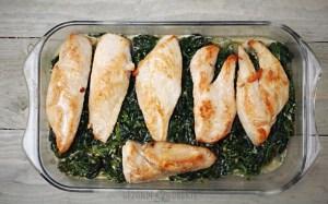 kip met spinazie