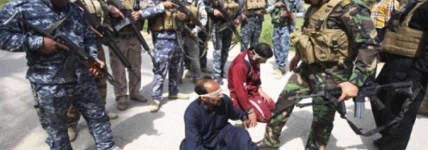 Eight Islamic State terrorists captured in Anbar