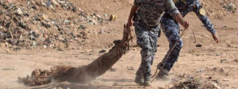 New ISIS mass grave found in Iraq's Babil