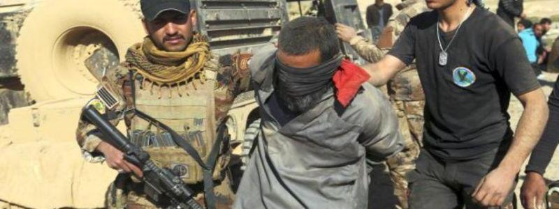 Three ISIS terrorists arrested over targeting citizens and security forces in Fallujah