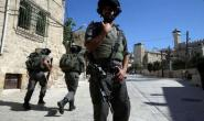 Hamas head operative in Tulkarm arrested by the Israeli security forces