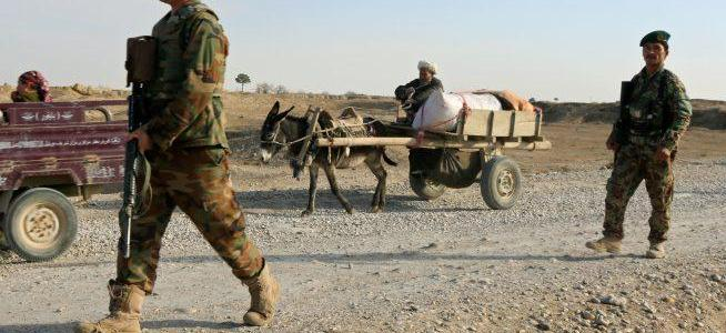 Increased number of Taliban swearing allegiance to Islamic State terrorist group