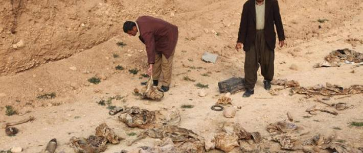 Another mass grave of Yezidis executed by the Islamic State found near Sinjar