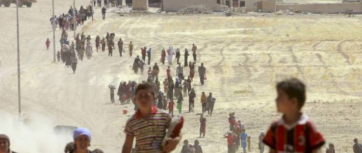 Western Islamc State terror recruits responsible for majority of Yazidi genocide crimes