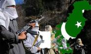 Pakistan is recruiting battle-hardened Taliban terrorists for attack in Kashmir