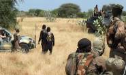 Boko Haram terrorists killed eight farmers in Nigeria's Borno State
