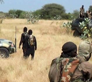 GFATF - LLL - Boko Haram terrorists killed eight farmers in Nigeria Borno State