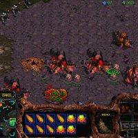 StarCraft: Brood War PC windows screenshot