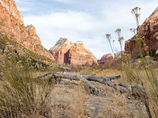 Zion National Park, Utah, Nov 2017