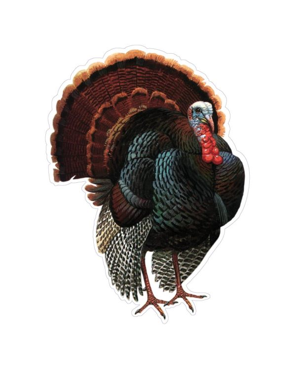 "Turkey Magnet or Sticker for Indoor or Outdoor Use 7"" x 5"""