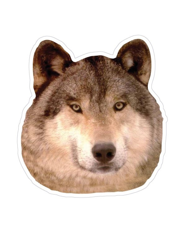 "Wolf Magnet or Sticker for Indoor or Outdoor Use 5.5"" x 6"""