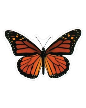 """Monarch Butterfly Magnet or Sticker for Indoor or Outdoor Use 6.5 x 4"""""""