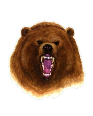 """Brown Bear Magnet or Sticker for Indoor or Outdoor Use 5.5"""" x 5"""""""
