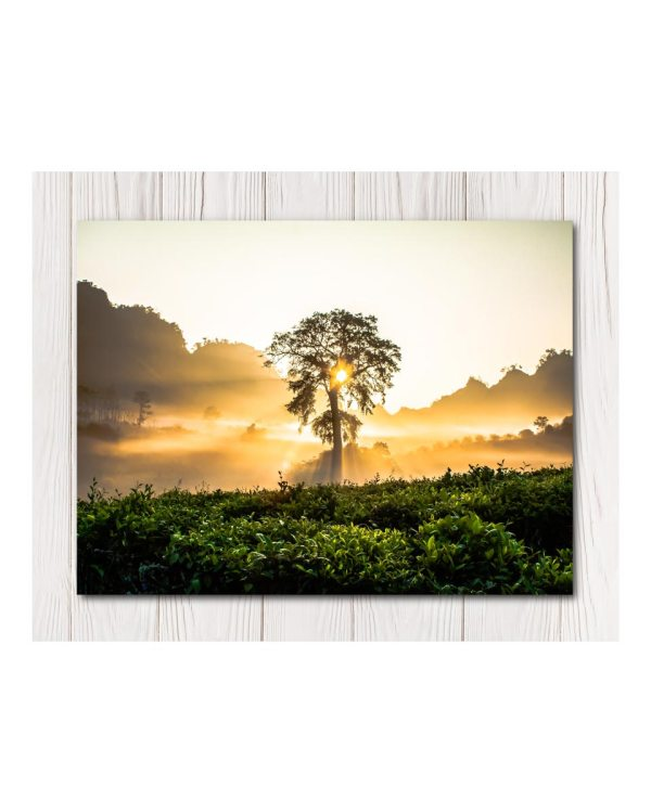 Serenity Tree Canvas in 4 Sizes