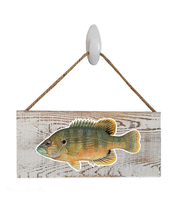 """Good Vibes™ Green Sunfish White Wood Sign. Size: 12"""" W x 5.5"""" H - With Rope 11"""" H -.30 Thick"""