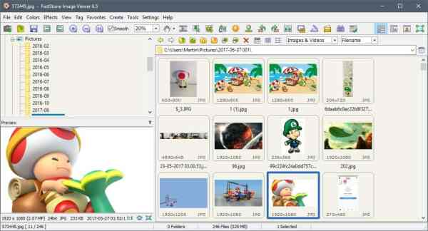 FastStone Image Viewer 6.5 supports video import - gHacks ...