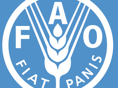 FAO signs deal on Voluntary Partnership Agreement Implementation