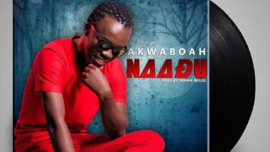 Photo of Akwaboah – Naadu (Prod. By Skinny Willis)