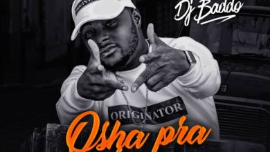 Photo of Mixtape : Dj Baddo – Osha Pra Pra Mix Ft  Patapaa And Many More